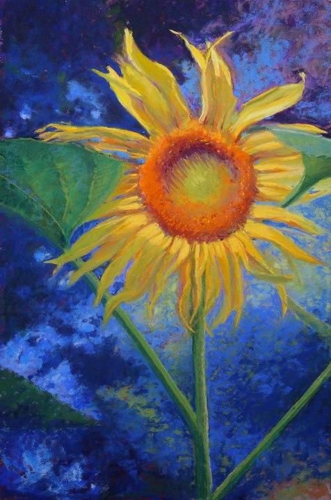 Sunflower, 12x18