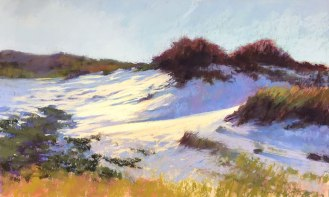 Purple Shadows, Sandy Neck, 20x12